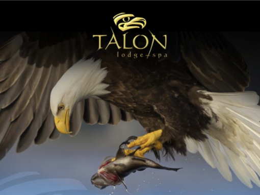 Talon Lodge – Email Design